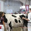 WIJrSF16IMG_3326