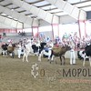 WIJrSF16IMG_3324