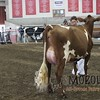 WIJrSF16IMG_3527