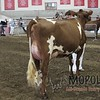 WIJrSF16IMG_3525