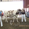 WIJrSF16IMG_3602