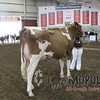 WIJrSF16IMG_3537