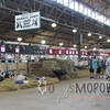 WIJrSF16IMG_3306