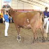 WIJrSF16IMG_3764