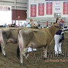 WIJrSF16IMG_3516