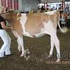 WISF16-GURIMG_4987