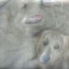 Keno & Amy