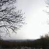 Ein Blick ins Wiener Becken im Jänner