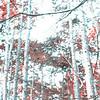 Im Wald, Sommerhauch