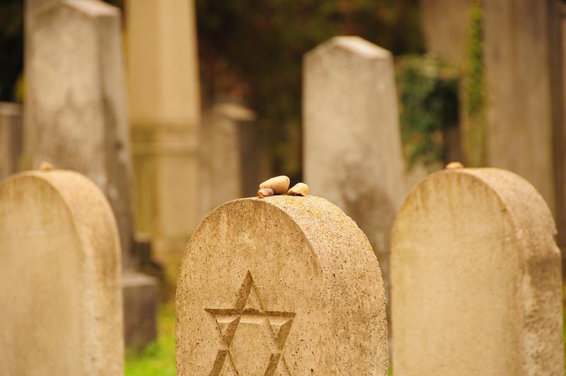 Farben, Kontraste und SW am Wiener Zentralfriedhof