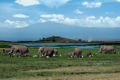 MT. KILIMANJARO - AMBOSELI, KENYA