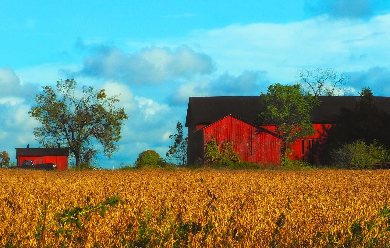 TWO FARM BUILDINGS, LEAMINGTON