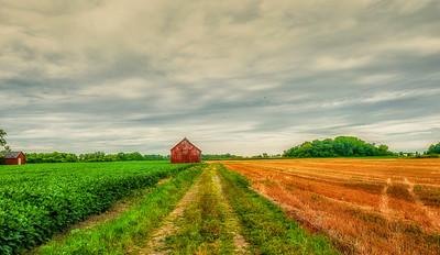 Ruthven Farm