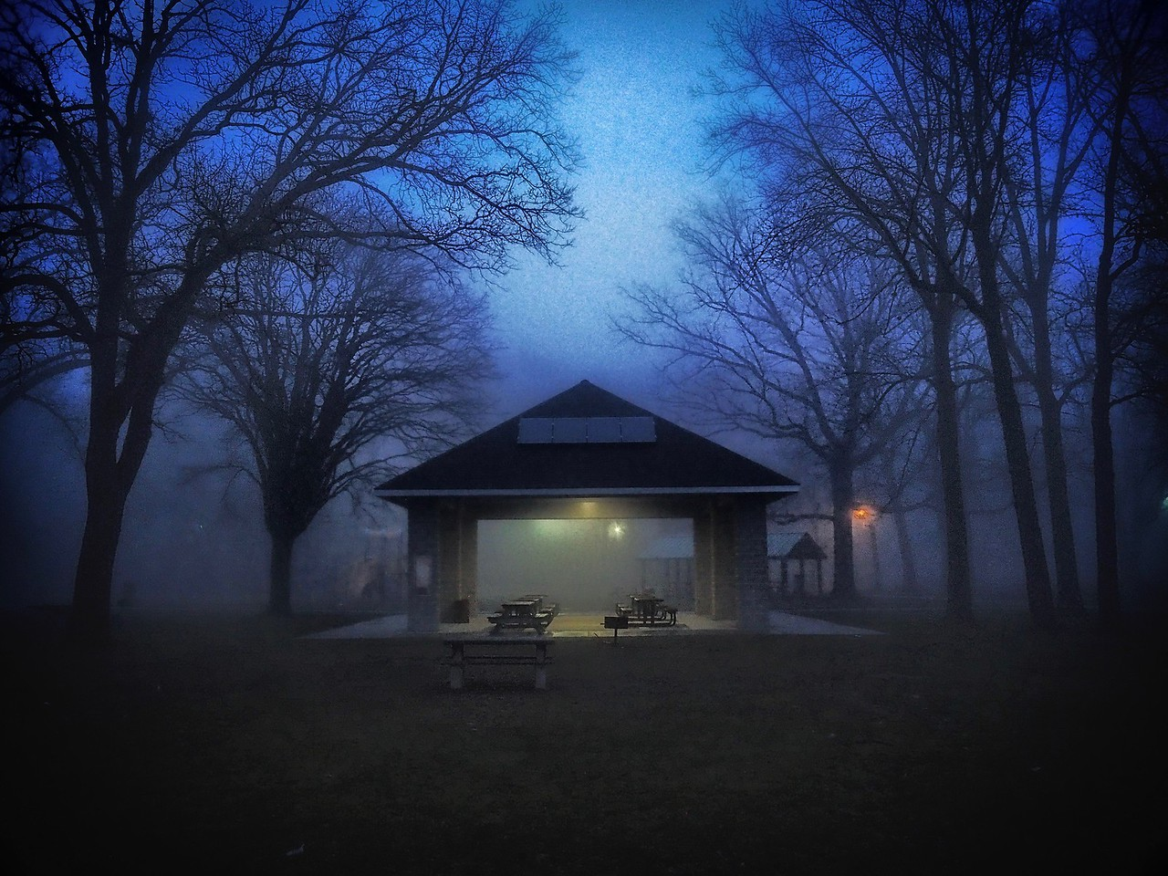 Memorial Park in the Fog
