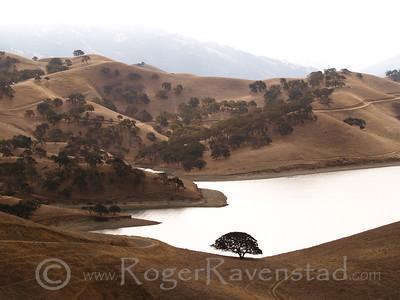 Lone Oak Lake Del Valle Image I.D. #:  V-06-005