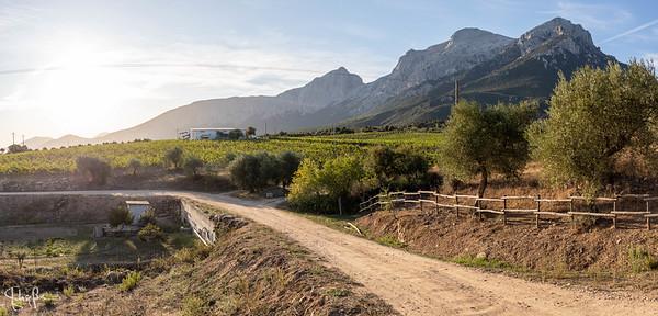 Puddu winery