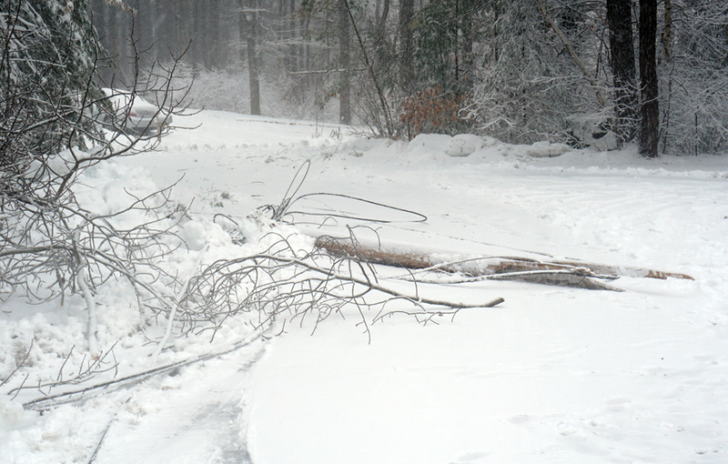 . One of two broken poles at Kevin Road in Dracut which was taken down due to DPW plow truck hitting low hanging wires. (The Sun / Chris Tierney)