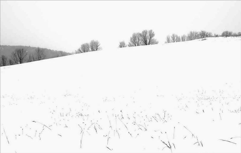 Winter Field   Quechee, vt