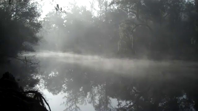 Withalacoochee River near the ghost town of Croom FL.