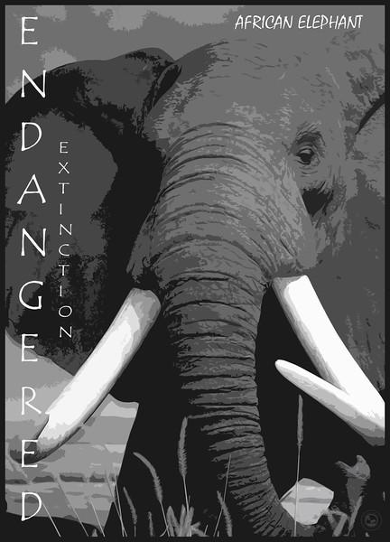 Elephant Endangered 2018.jpg