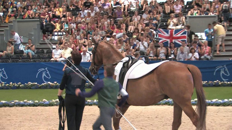 GBR-FOREMAN, Ross i Saturday-Freestyle