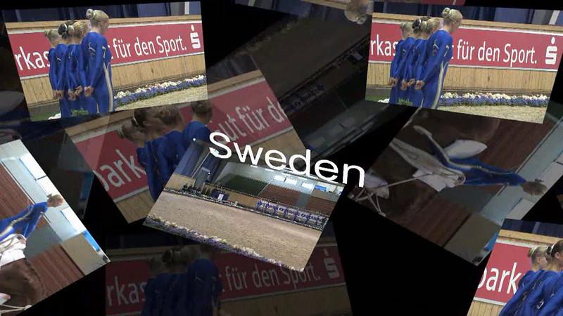 Sweden Compulsory Test