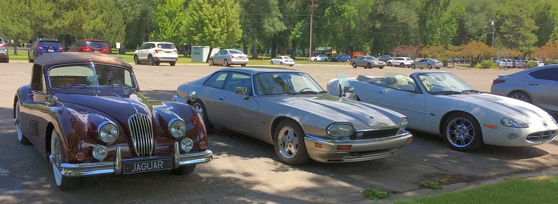 From left to right the Lindstrom XK140, Borg XJS and Southwick XK8.