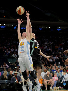 WNBA 2014 - The Chicago Sky defeat the New York Liberty 79-65