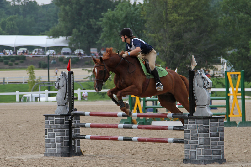 Gibson D in Horse 1