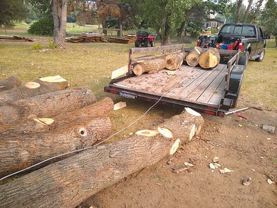 PHOTO: Unloading using a snatch block on a tree