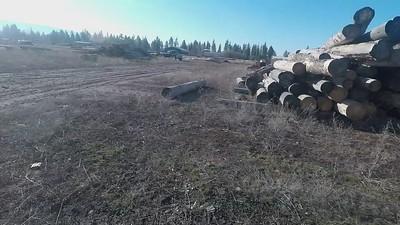 Mar 17, 2021 :Loading Spruce logs