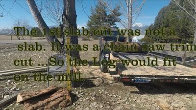 Mar 13, 2021: Trimming & Milling  big pine Logs