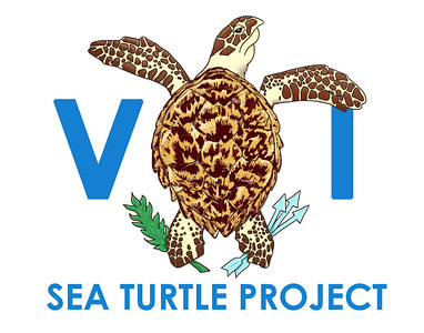 CUSTOM VIRGIN ISLANDS SEA TURTLE PROJECT LOGO DESIGN