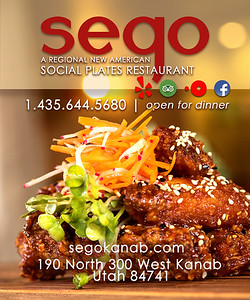 SEGO RESTAURANT PROMOTIONAL FLYER