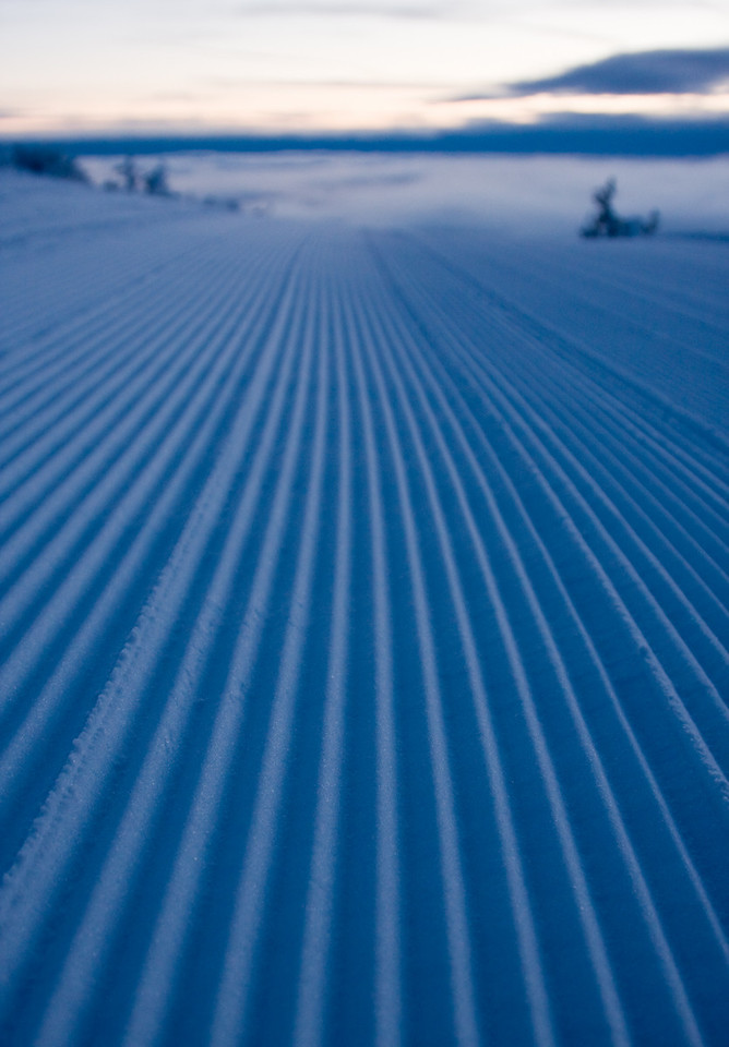 Corduroy.<br /> <br /> Lens used: 24-105mm f4.0 IS