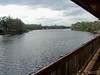 the view from the deck of Blaires Jungle Den. This is a motel near Volusia Speedway.