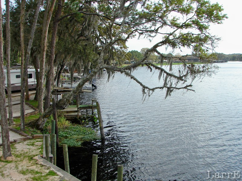 Florida at it's best.<br /> Lodging not far from Volusia