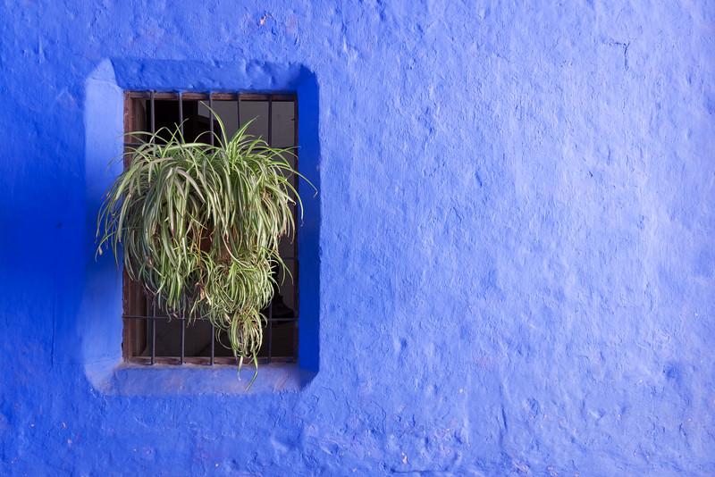 Blue wall.