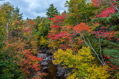 Autumn foliage along Effie's Brook in the village of Cape North on the Cabot Trail in northern Cape Breton