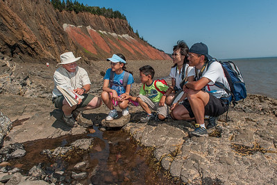 A retired geologist leads a group attending the annual Rock and Gem Show in nearby Parrsboro on an interpretitive walk along the shores of the geological-rich Bay of Fundy at Five Island Provincial Park