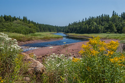 Spicer's Cove Brook  at Spicers Cove on the edge of Cape Chignecto Provincial Park.