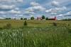 Meagher's Grant farm