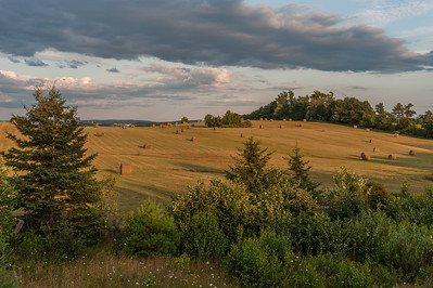 The warm light of the setting sun illuminates a field along the Evangeline Trail between the towns of Hantsport and Windsor