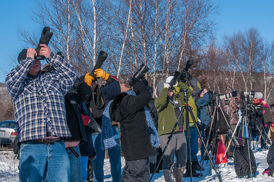 Spectators watch and photography eagles at the annual Eagle Watch weekend  festival in Sheffield Mills near Kentville on the Evangeline Trail