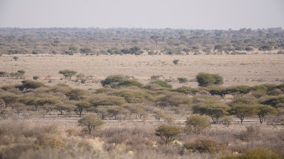 """Landscape (Rakops / Central / Botswana - 21°19'58.079"""" S 23°41'17.999"""" E)"""