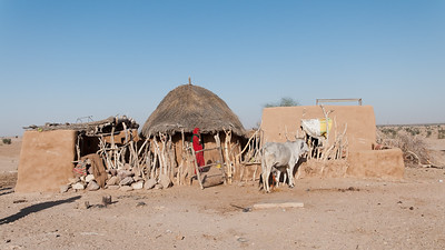 La maison bishnoï consiste à de petites pièces- cases- (cuisiner, dormir, parents, enfants, familles…) autour d'une cour centrale. Le matériau de construction est en bouse.