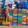 This boy making full use of the multi-coloured fish boxes in Essaouira Port  as he picks the best to take home.