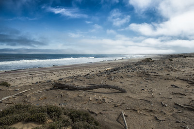 Skeleton coast - Ship wreck in the background
