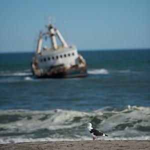 Skeleton coast - Ship wreck