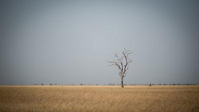 "Landscape, Paysage - Location 18°39'40"" S 24°5'31"" E"